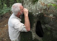 Klaas scrutinize the beech bark after crustose lichens